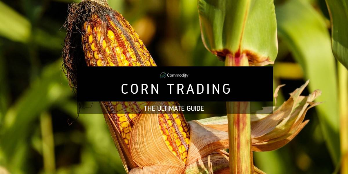 Corn: Learn How To Trade Agricultural Commodities at