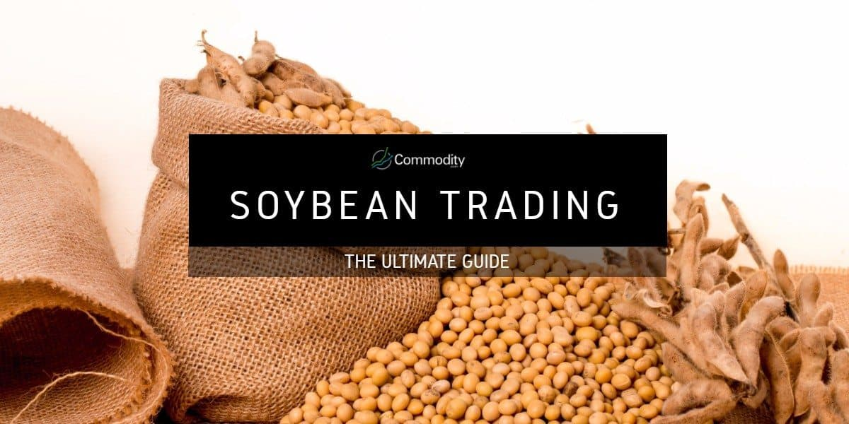 Soybean: Learn How To Trade It at Commodity.com