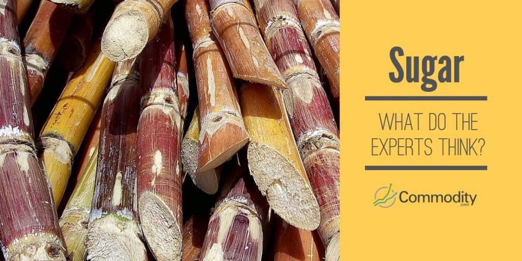 Sugar Trading Experts