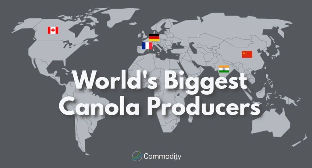 Map showing the countries that produce the most canola