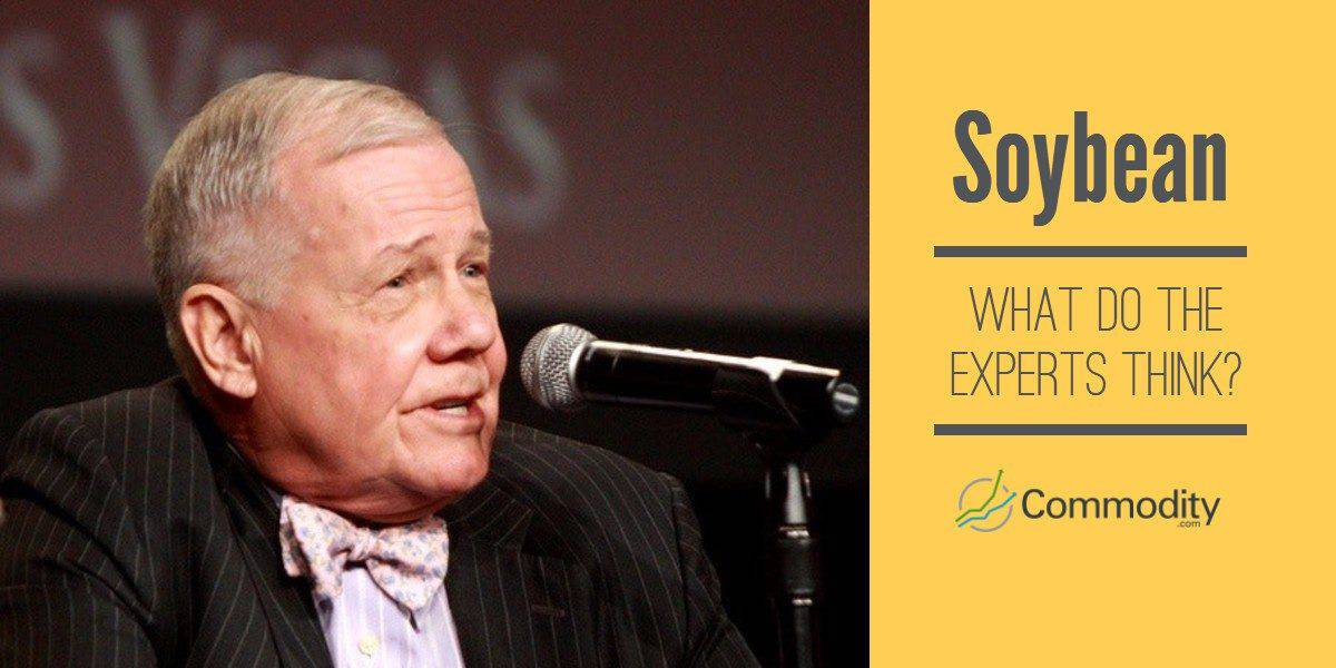 Jim Rogers soybean opinion