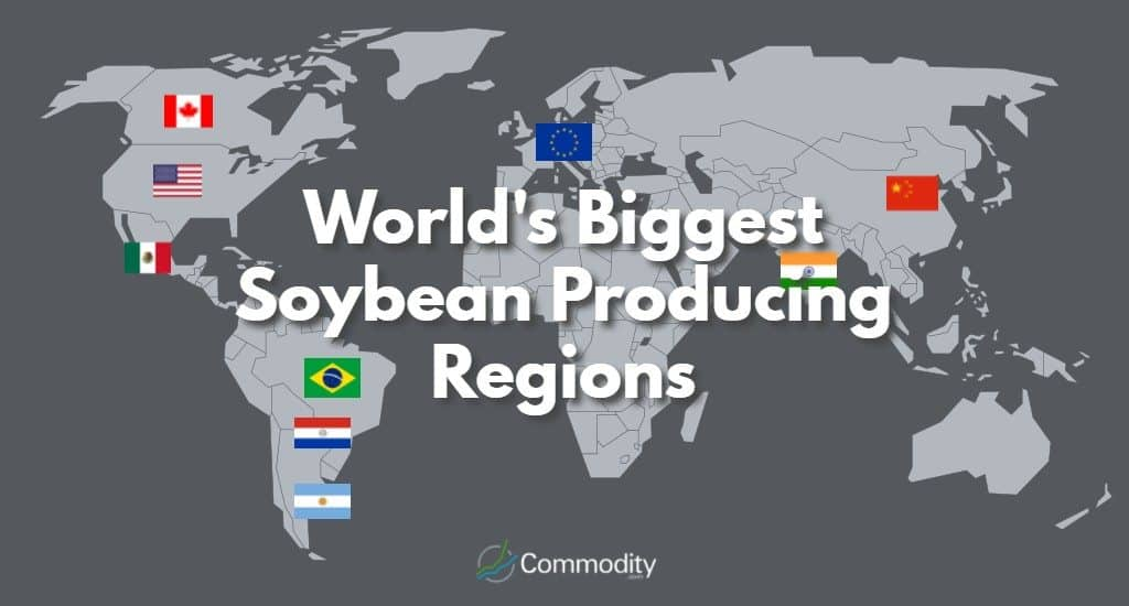 world map to show the biggest soybean producers
