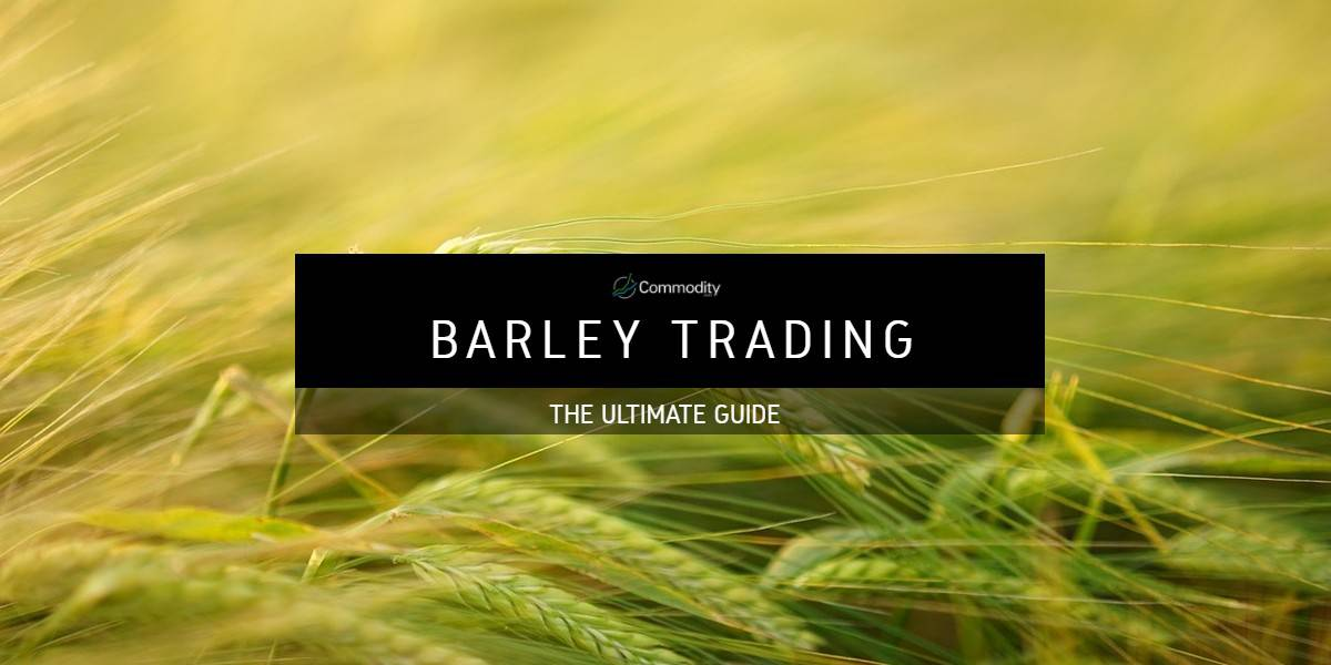 Barley: Learn How To Trade Agricultural Commodities at