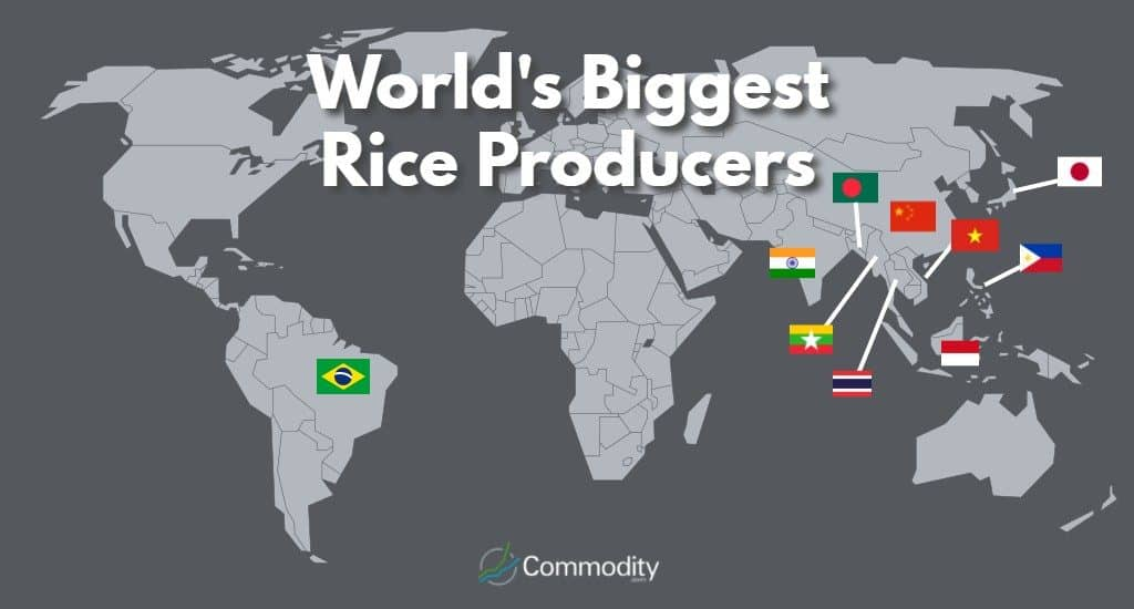 10 Biggest Rice Producing countries