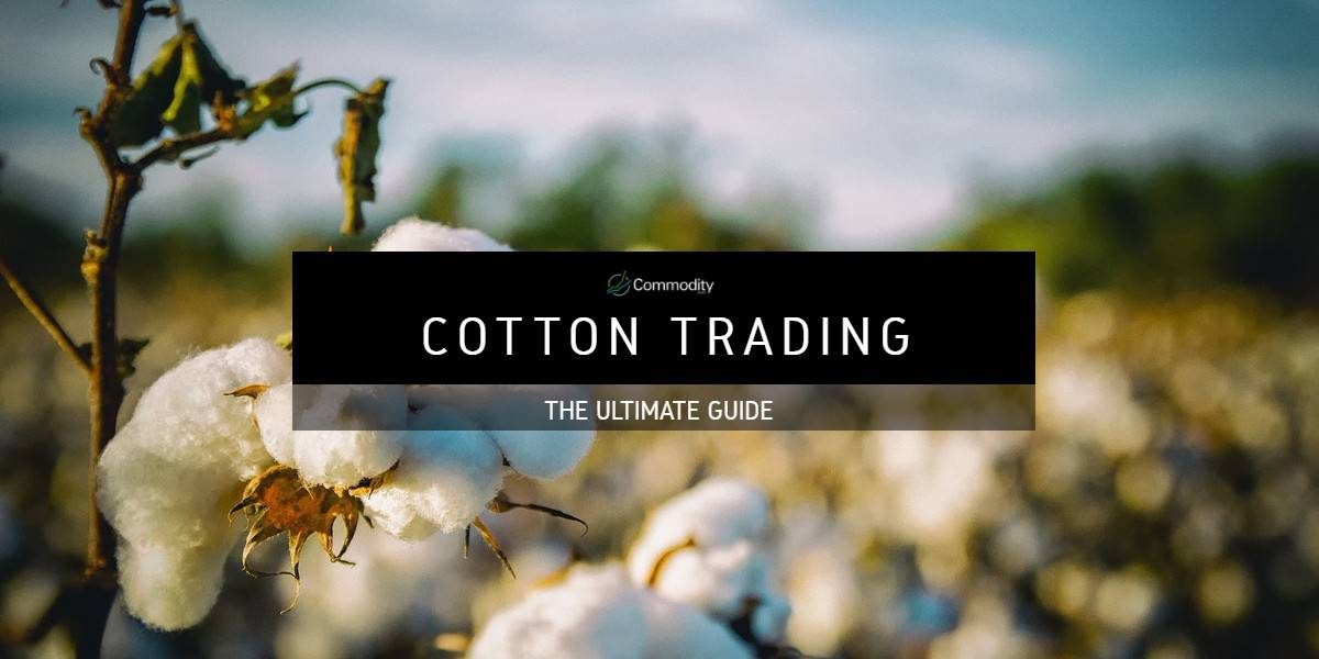 Cotton: Learn How To Trade Agricultural Commodities at Commodity.com