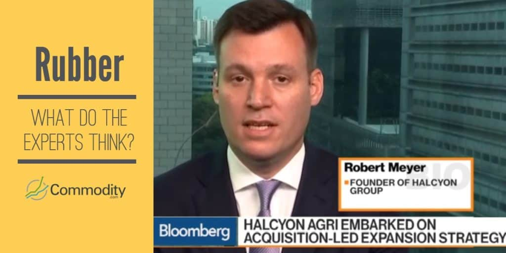 Robert Meyer CEO of Halcyon, expert opinions on rubber