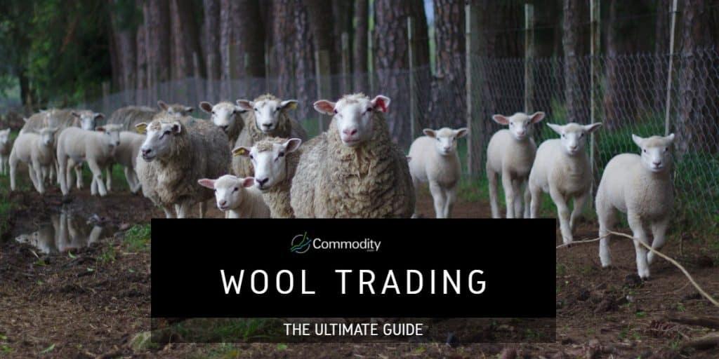Wool Trading Header