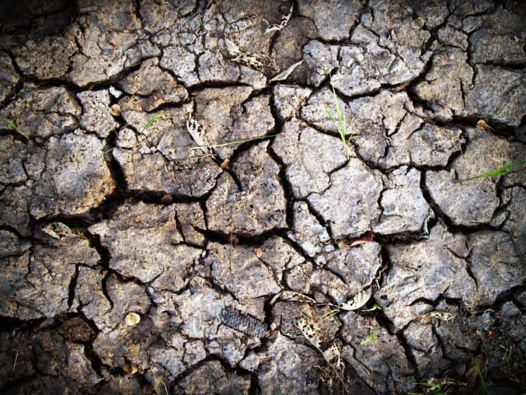 drought via pixabay