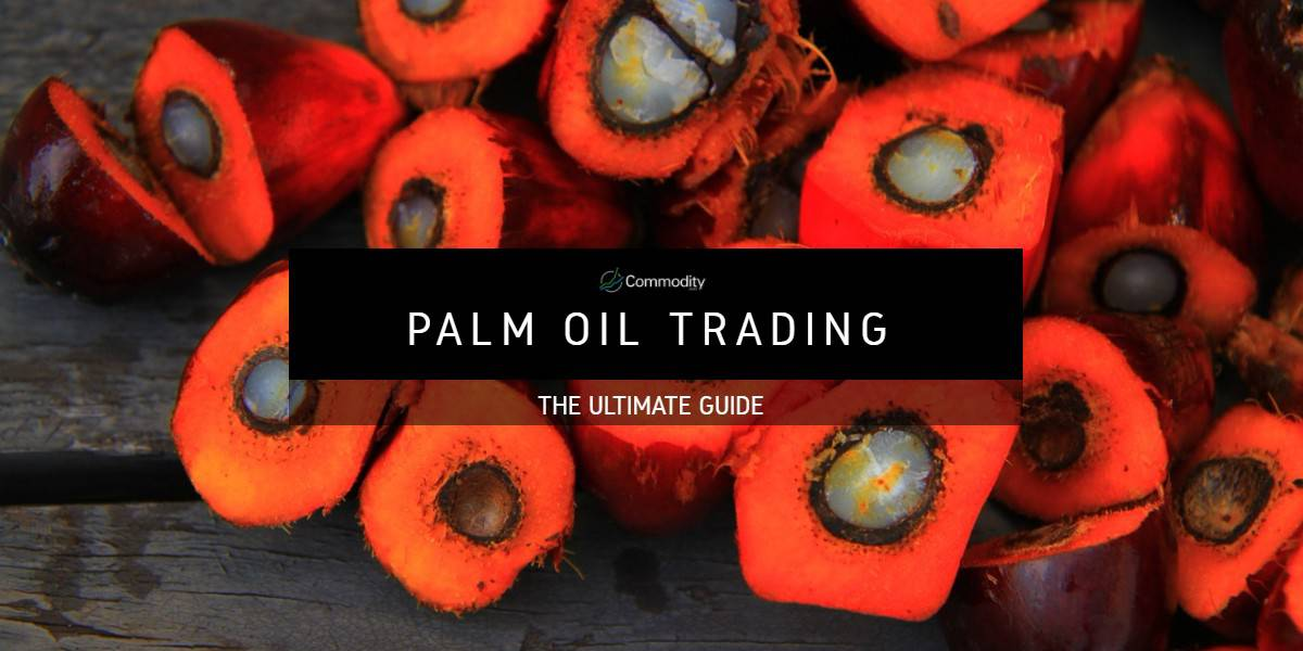 Palm Oil: Learn How To Trade It at Commodity com