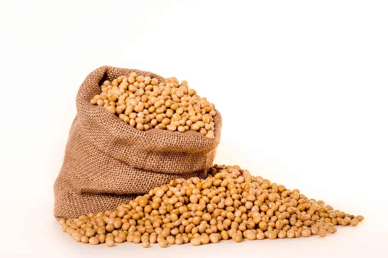 Soybeans via Pixabay
