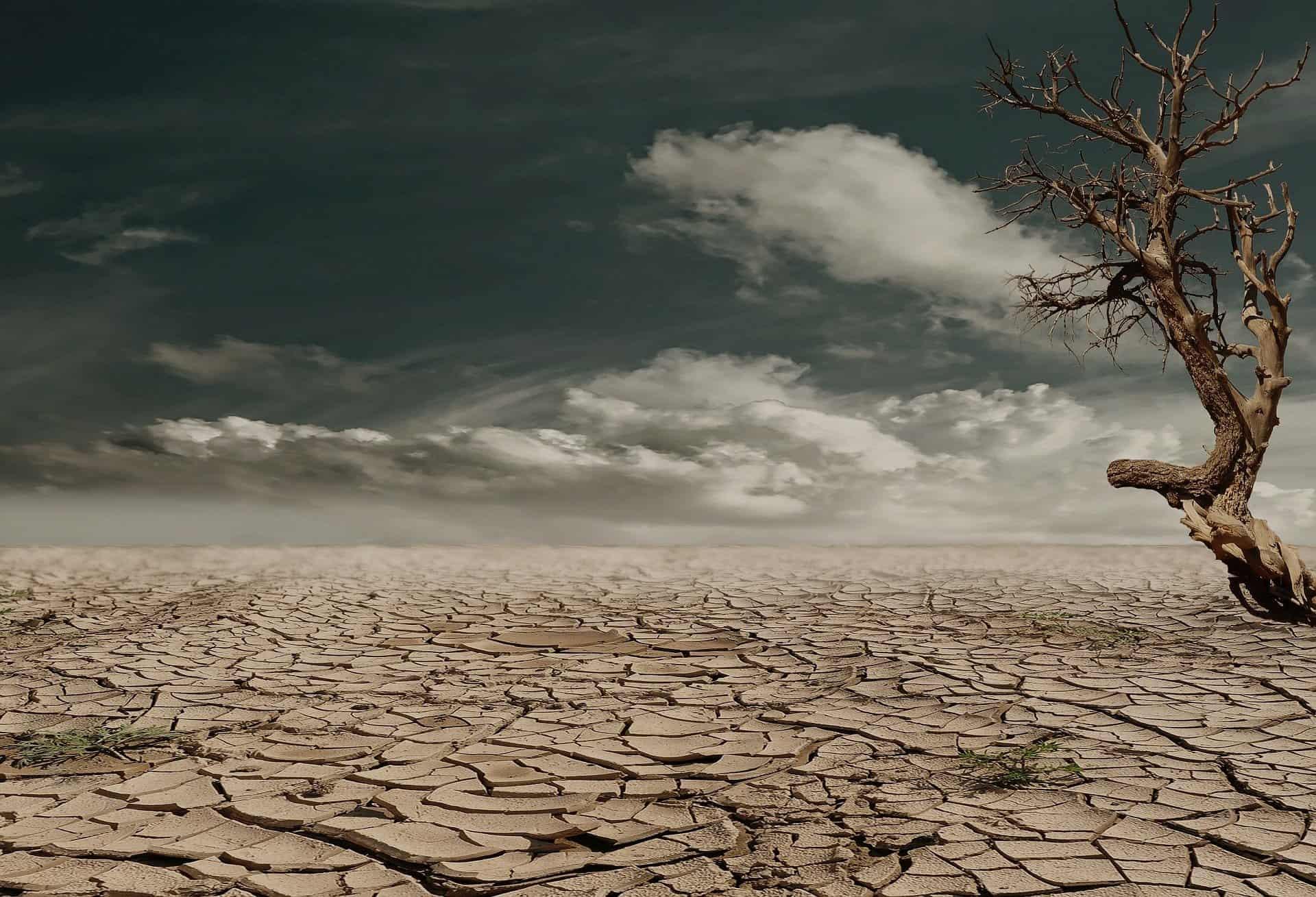 Drought-ravaged land