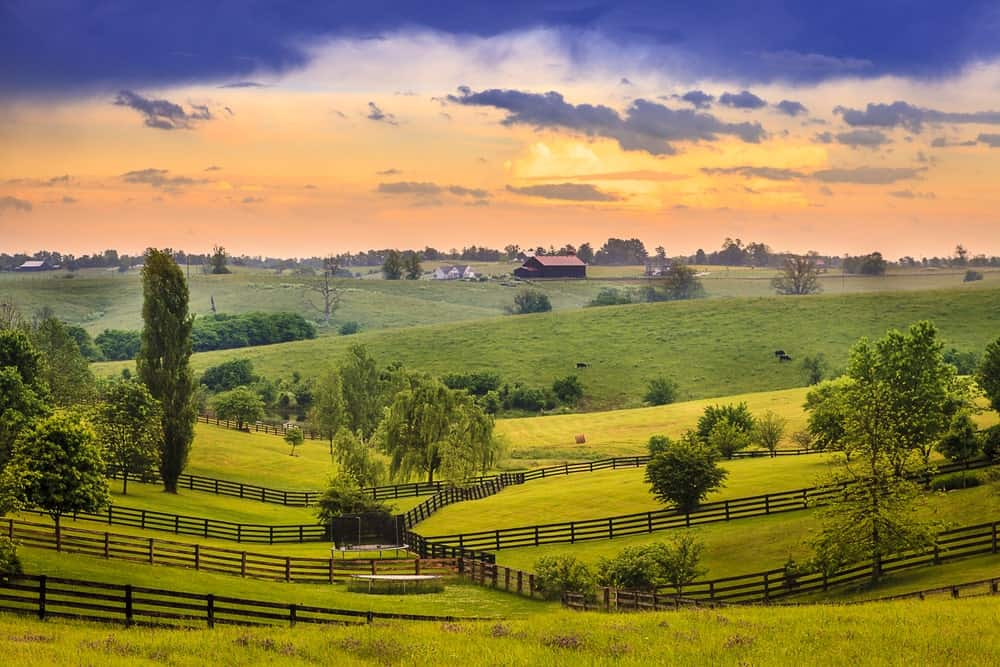 Kentucky Agriculture