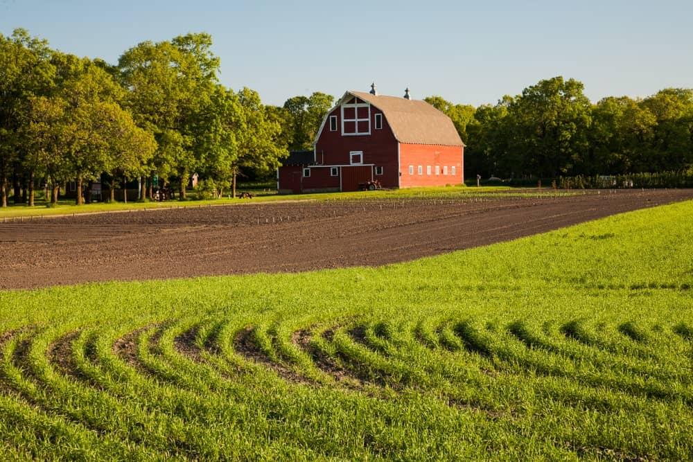North Dakota Agriculture