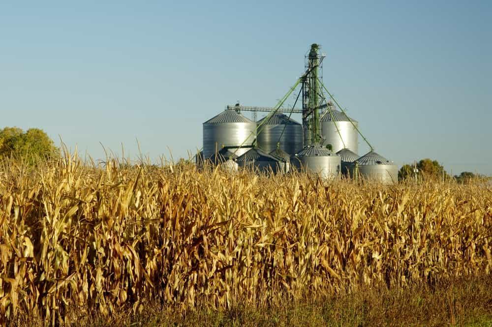 South Dakota Agriculture